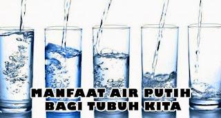 Manfaat Air Putih Bagi Kesehatan Tubuh Kita