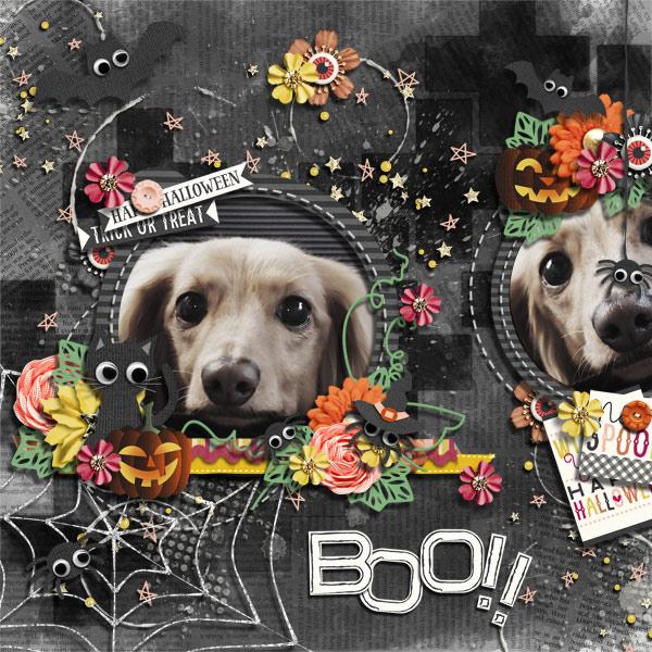 DSB Boo!!