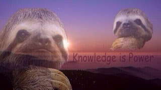 Knowledge is power meme