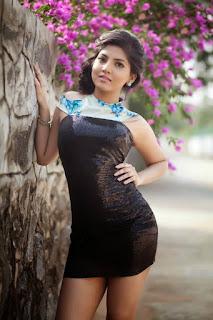 Actress Anaswara Pictureshoot Gallery  0011.jpg
