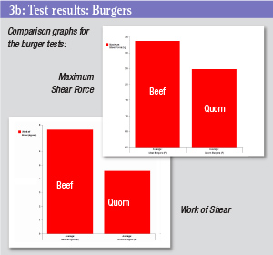 Test results chart - burgers