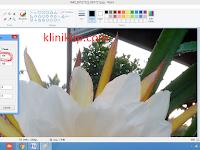 Cara kompres gambar paling mudah agar loding blog jadi ringan