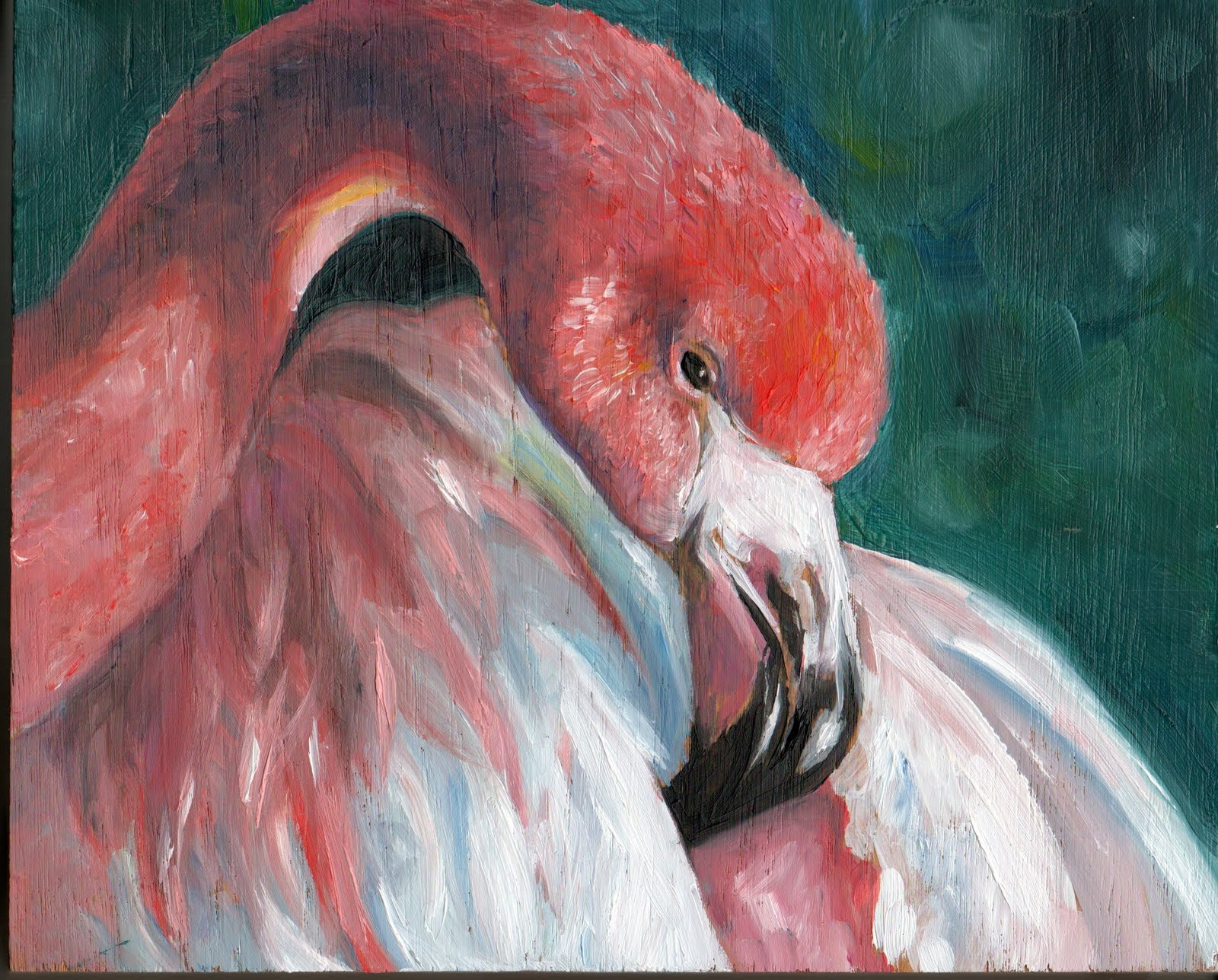 Laura Gross Illustration: Flamingo