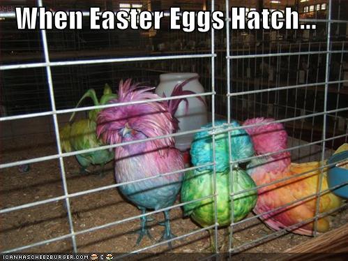 Easter Bunny Jokes Adult Humor 94