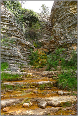 Fuente Del Agujero (Tierra Muerta)