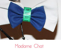 noeud papillon madame chat