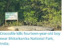 https://sciencythoughts.blogspot.com/2018/04/crocodile-kills-fourteen-year-old-boy.html