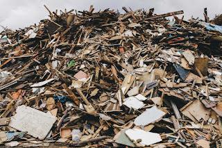 Bron: Planbureau voor de leefomgeving (www.pbl.nl), biomassa