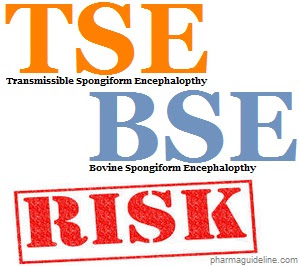 Risk of TSE and BSE in Pharmaceutical Products