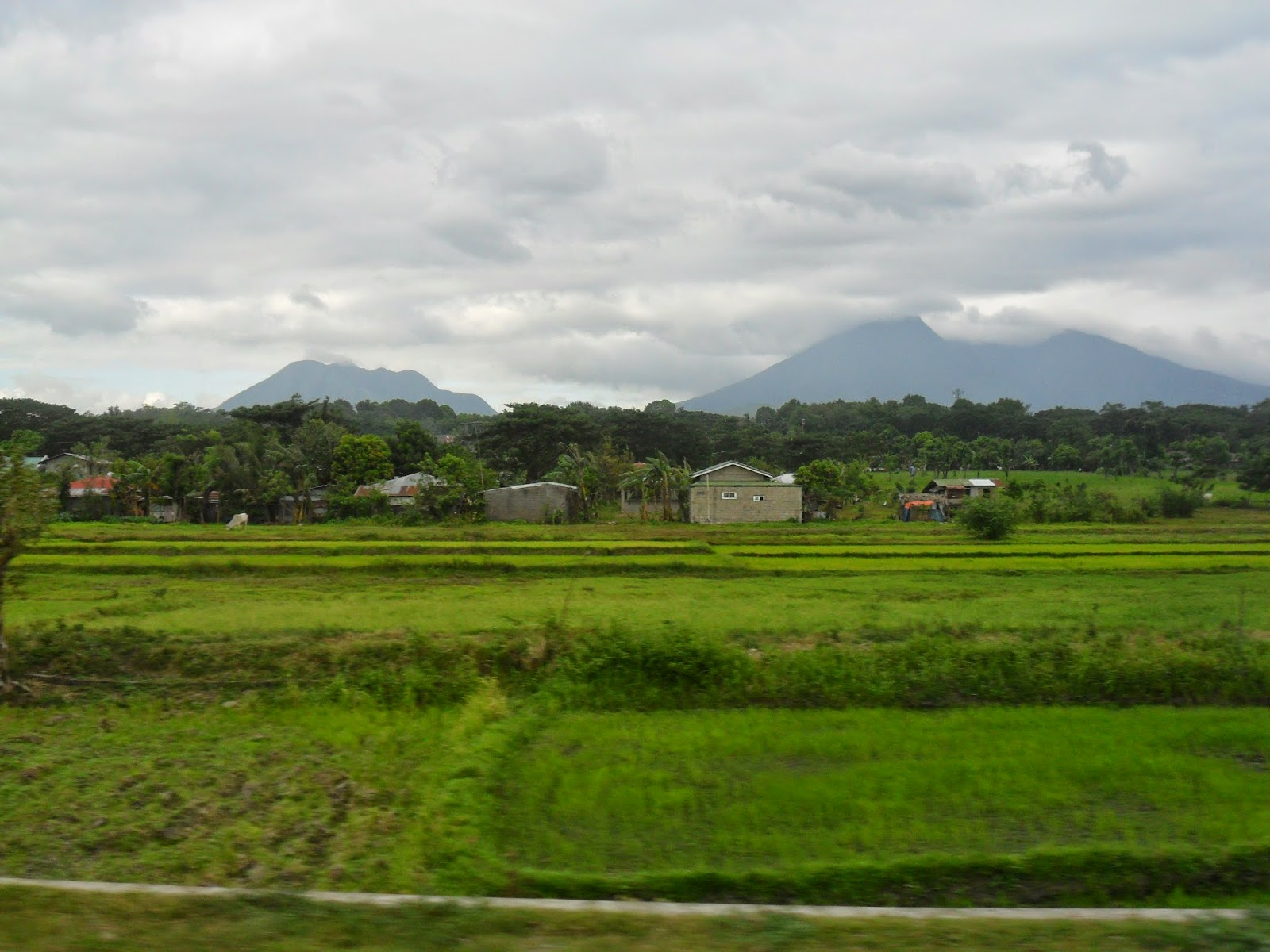 Expat aux philippines acheter un terrain aux for Acheter un terrain financement