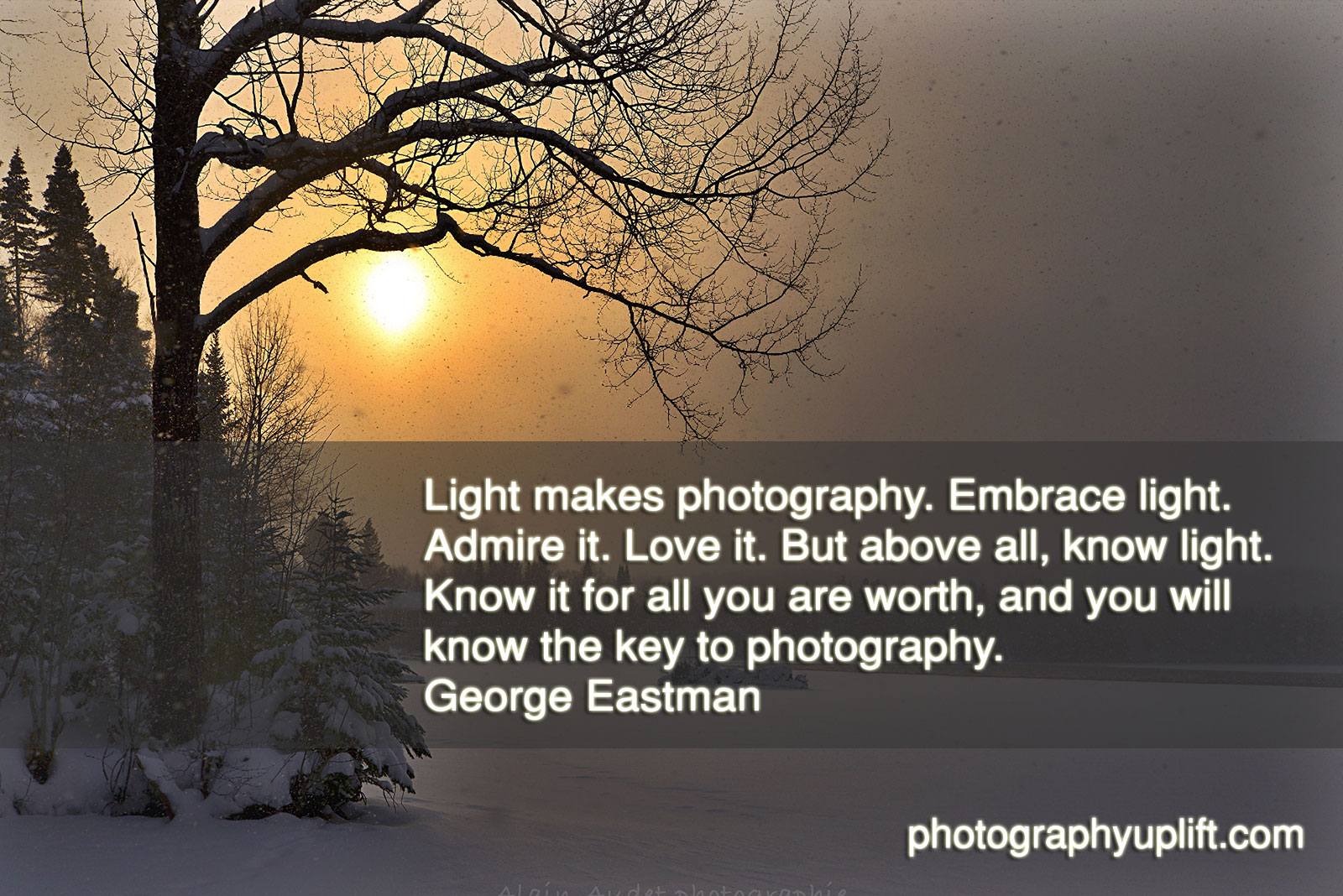 Photography Quotes Light Makes Photography  Photography Quotes