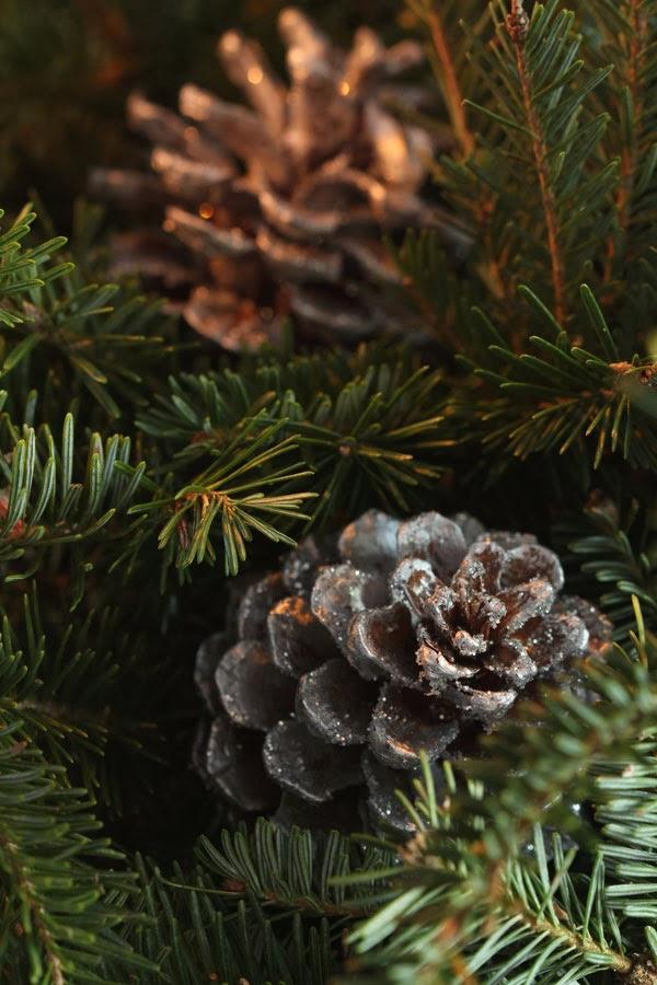 Setting the Table: Christmas | Ridgely's Radar
