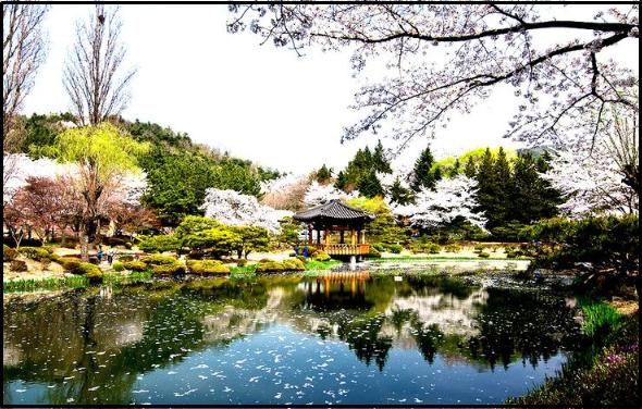 Tempat Wisata Paling Indah Di Korea Selatan