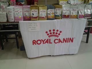 Cat show Batam bazar
