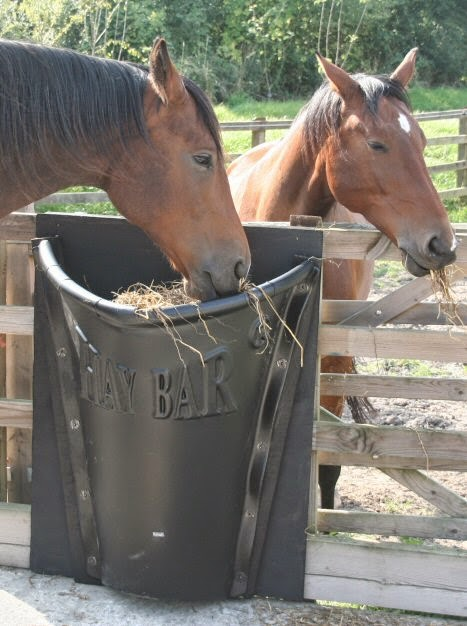 Discoverthat Portable Hay Bar