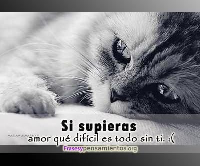 Imagenes Con Frases De Amor Tristes Mizancudito