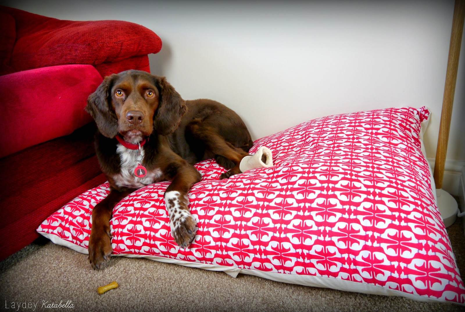 laydey katabella dog bed