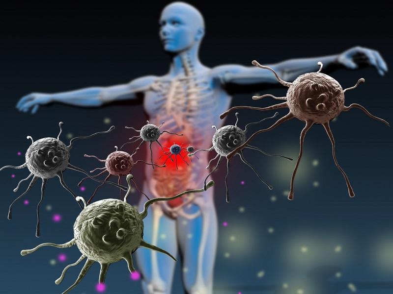10 Truques Rápidos Para Melhorar Sua Imunidade Quase Imediatamente (Baseado em Evidências)