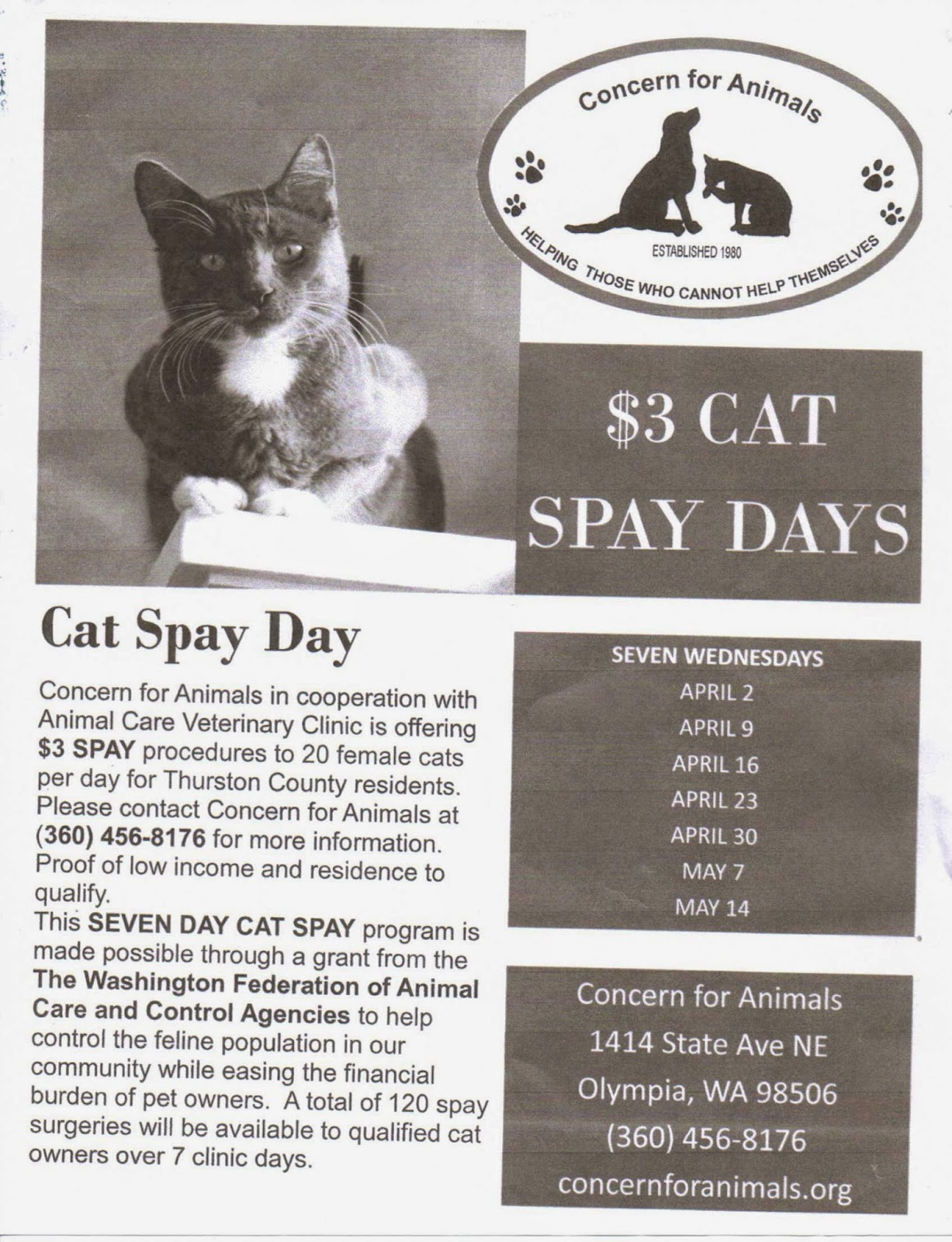Rainier Lions Club 3 00 Cat Spay Day