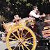 La sfilata dei carretti siciliani - Sagra del Mandorlo in Fiore
