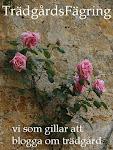 http://tradgardsfagring.blogspot.se/