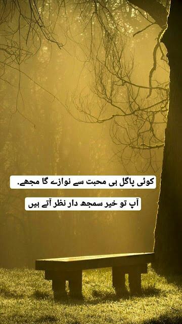 Koi pagal hi mohabbat se nawazay ga mujhe   App tu khair samjhdar nazar aty hain