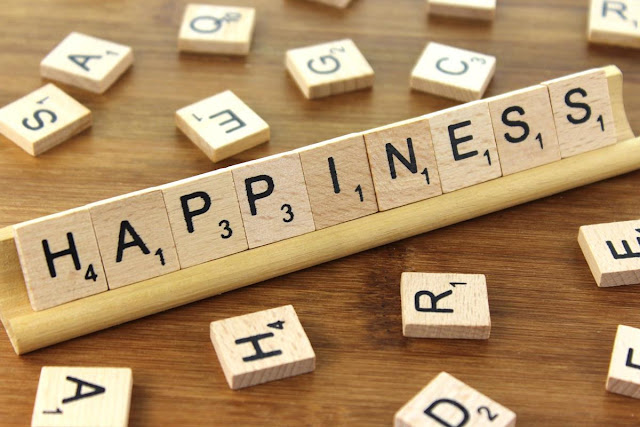 find, happiness, life,