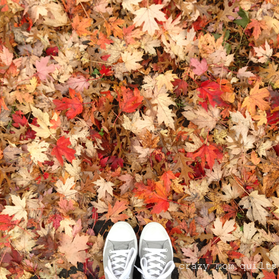 Crazy Mom Quilts: Inspired By Fall