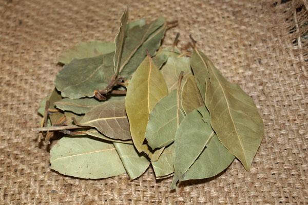 علاج ورم الطحال وصلابته بالأعشاب