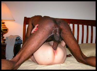 Black Busty Tribbing