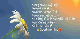 Gujrati Satya Vachan Messages And Quotes