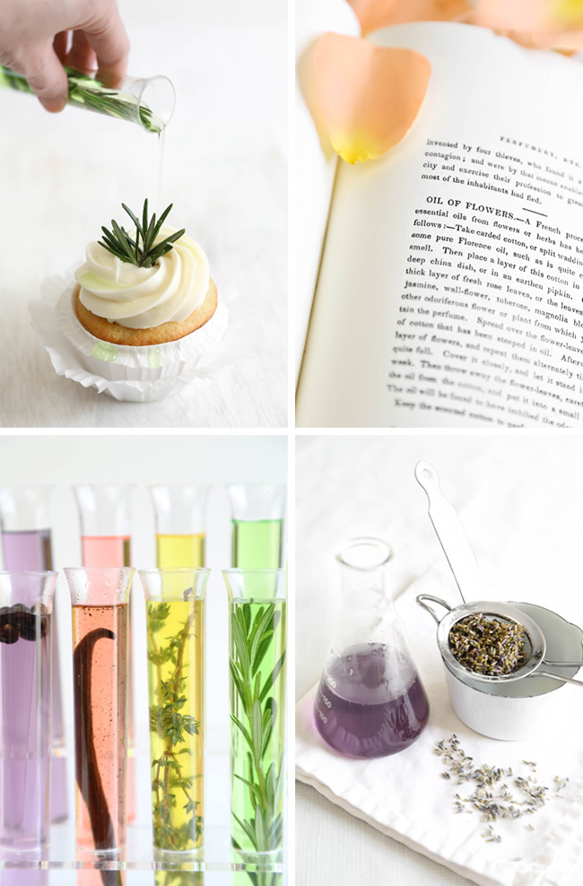 DIY Love Elixirs: Infused Simple Syrups   Sprinkle Bakes