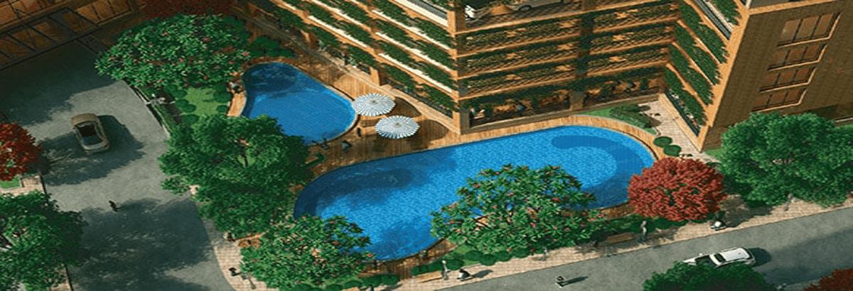 Bể bơi The Golden An Khánh