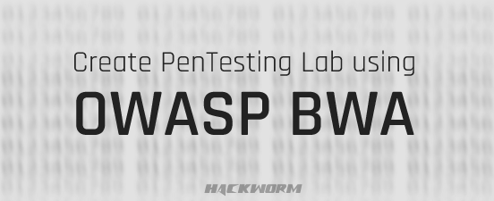 Penetration Testing Lab using OWASP BWA