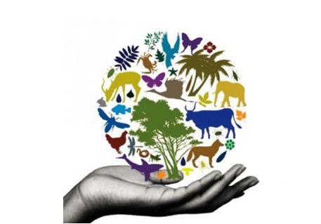 Jelaskan Pengertian Keanekaragaman Hayati Menurut Uu No 5