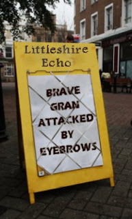 Littleshire Echo news hoarding: Brave gran attacked by eyebrows
