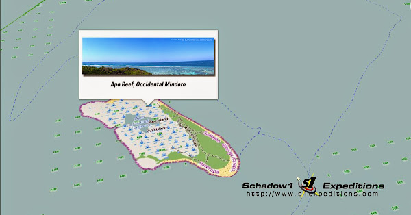 Apo Island Mapping Expedition - Schadow1 Expeditions