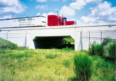 ecodutos-pontes-verdes-travessia-de-animais