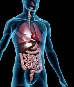 intestinos sucios sintomas