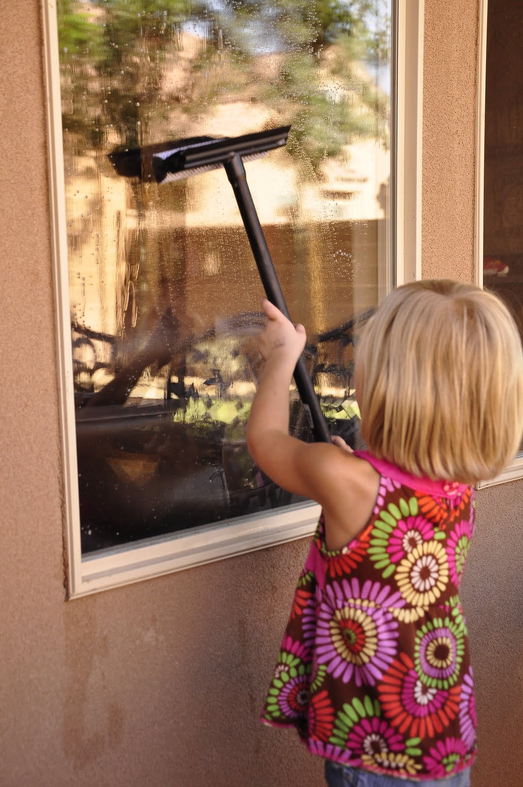 Homemade window cleaning solution - Exterior window cleaning solution ...