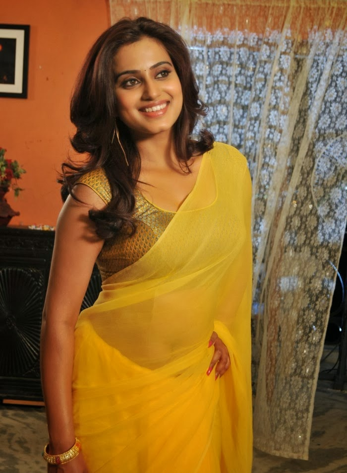 Telugu Romance Movie Actress Dimple Chopade Latest Hot -9444