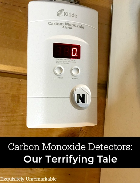 Kiddie Carbon Monoxide Detector Our terrifying tale