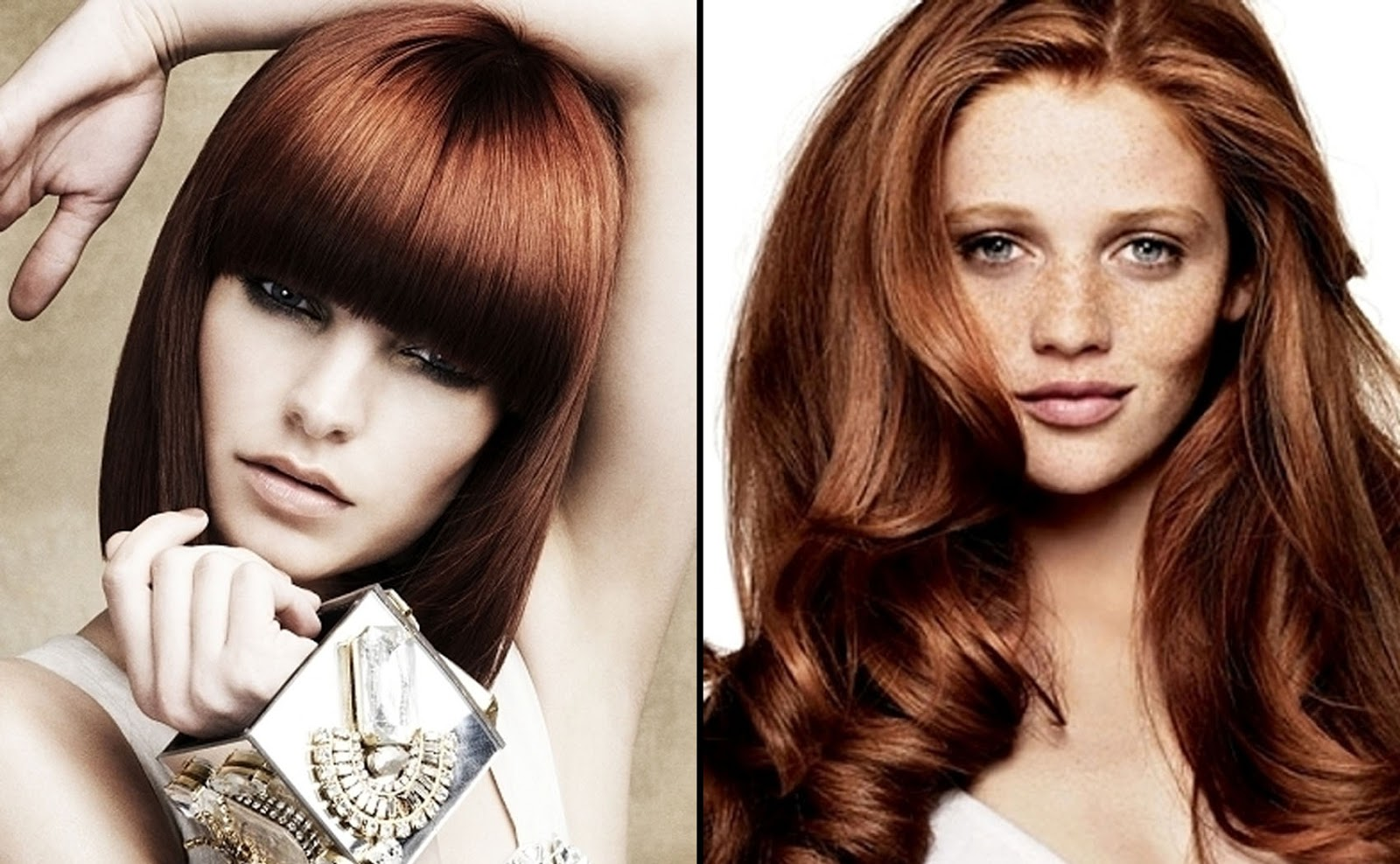 48 New Hair Color Ideas For Long Haired Women | Hairstylo