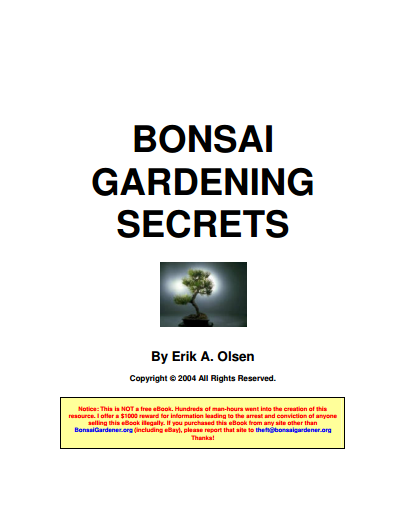 Bonsai gardenning secrets