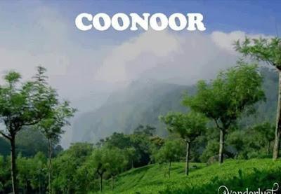 Coonoor Hotels
