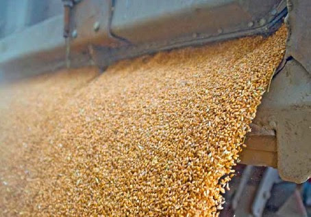 Instrumentation and Controls for the Grain Industry