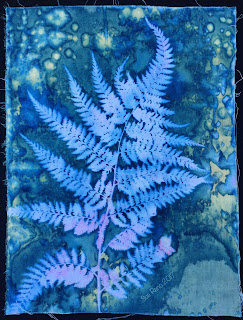 Wet cyanotype, Sue Reno, Image 13