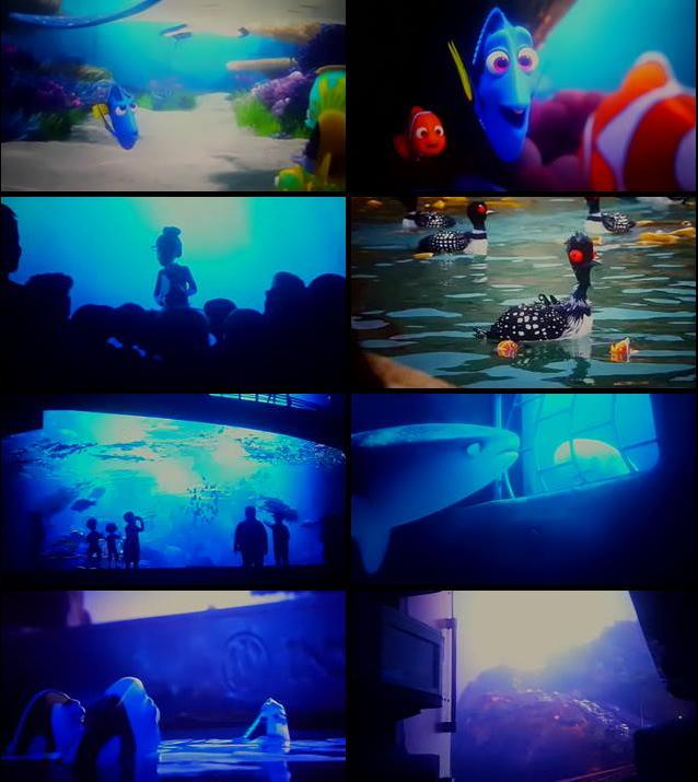 Finding Dory 2016 Dual Audio Hindi 480p HDTS