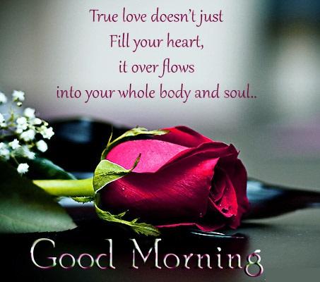 Good Morning Images Shayari Hd Photos Jaanu Shayari