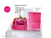 Frozen Square Set 4 Tupperware Promo Februari 2017